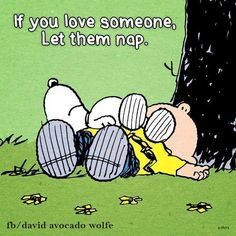 Happiness Is A Nice Long Nap! Snoopy on Top of Charlie Brown Happiness Is A Nice Long Nap! Snoopy on Top of Charlie Brown Peanuts Gang, Peanuts Cartoon, Charlie Brown And Snoopy, Charlie Brown Quotes, Snoopy Cartoon, Snoopy Love, Snoopy And Woodstock, Snoopy Quotes, Peanuts Quotes