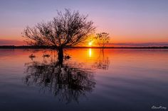 Amanhecer no lago Arumã, Rio Preto
