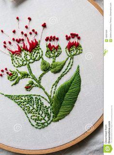 Broderie Moderne De Cercle Avec Des Motifs Botaniques Sur Un Fond En Bois Image stock - Image du pointeau, serviettes: 108501829