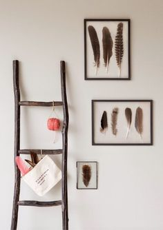 Framed #Feathers in #Home Decor.