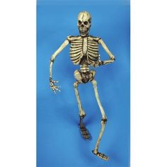 6 Foot Skeleton Prop by SpookShop. $90.38. Latex outer skin. Bendable. 6 feet tall. Set this skeleton up for your next Halloween party, and let the fun begin. 6 feet tall. Latex outer skin. A must prop for good scary fun.. Save 26%! Halloween Candy, Halloween Decorations, Halloween Costumes, Let The Fun Begin, Seasonal Decor, Printmaking, Latex, Scary