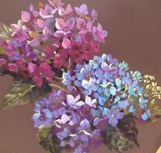 Nel Whatmore Pastel painting Hydrangeas 1