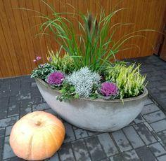Garden Tub, Easy Garden, Garden Plants, Derelict Buildings, Pot Plante, Fall Planters, Yard Landscaping, Container Gardening, Outdoor Gardens