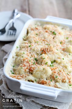 Cauliflower baked in a creamy cheese sauce with a crunchy breadcrumb topping! This Cauliflower Gratin is a delicious and easy side dish for any meal| LoveGrowsWild.com