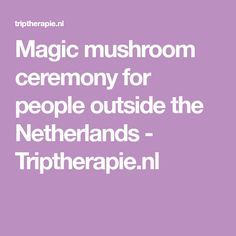 Magic mushroom ceremony for people outside the Netherlands - Triptherapie.nl The Outsiders, Stuffed Mushrooms, Magic, People, Psychedelic, Stuff Mushrooms, People Illustration, Folk