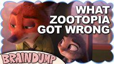 WHAT ZOOTOPIA GOT WRONG - Brain Dump