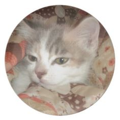 Cozy Furrball Dinner Plate!  #cat #kitten #zazzle #store #gift #present #birthday #Christmas #cute #purr #meow http://www.zazzle.com/conquestkitty*