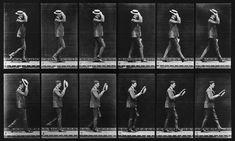Animal Locomotion: Plate 44 (Man Taking Off Hat), by Eadweard Muybridge - a 20x200 Vintage Edition