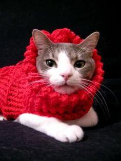 Knifty Knitter Purse & Cat Sweater - KNITTING