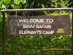 Elephant rides at Siam Safari Phuket Thailand #familytravel #travelwithkids