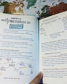 studious-annabeth:  I forgotten to post all of this earlier so here they are woohoo Beautiful Notes, Pretty Notes, Study Organization, Organizing, Study Journal, Study Tips, Study Habits, Student Life, School Motivation