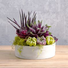 Create your own little garden with these lush green and burgundy artificial succulents