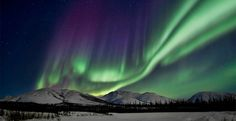 Aurora Viewing Tour Fairbanks | Alaska Northern Lights (NL#01) | The Northern Lights | Winter Tours