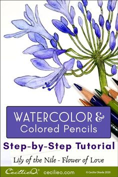 How to Watercolor Lily of the Nile, the Flower of Love – Cecilie Okada Design