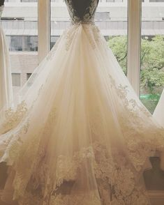Lazaro Style 3607 at Bella Bianca Couture Bridal in Chicago, IL