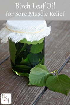 Making birch leaf oil for sore muscle relief is a quick and easy process that provides great results.