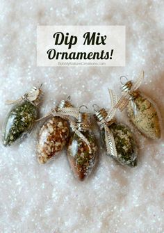 Dip Mix Ornaments! Each Ornament holds spices that when mixed with sour cream become yummy dips!!! Great gift idea!.