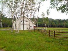 A Yankee Barn in Spr