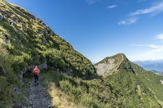 Ausflugsziele Schweiz: 99 Ideen für einen tollen Tagesausflug Switzerland, Montana, Nature, Travel, Fitness Workouts, Day Trips, Road Trip Destinations, Destinations, Random Stuff