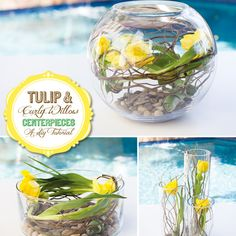 Learn how to make this gorgeous, yet very easy and budget friendly centerpiece idea