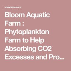 Bloom Aquatic Farm : Phytoplankton Farm to Help Absorbing CO2 Excesses and Producing O2   Tuvie