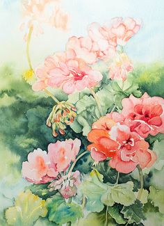 Geraniums by Linda Virio, Watercolor