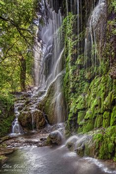 Gorman Falls at Colorado Bend, Texas, USA.  Landscape and waterfall photography by Ellen Yeates