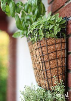 DIY Vertical Herb Garden | inspiredbycharm.com