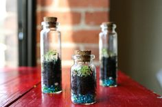 Tiny Terrariums—the seed beads in the bottom are a nice touch!