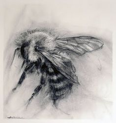 one of the 4 bees we bought.  so incredible on the wall.