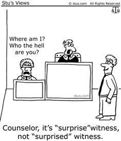 Mystery Fanfare: Cartoon of the Day: The Witness Funny Cartoons, Funny Jokes, Funny Signs, Funny Texts, New Mexico, Law School Humor, Prison Humor, Lawyer Humor, Jokes