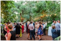 Wedding guests having canapes at a Perth Zoo Wedding Reception.  Photography by Trish Woodford - Mandurah Wedding Photographer