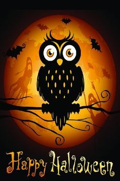"""Spooky Night Owl Halloween Vinyl Garden Flag 12.5"""" x 18"""" by Outdoor Accents. $13.99. Outdoor Accents Garden Flags artwork is full color digitally printed onto heavy duty durable vinyl material for long lasting use.. This Halloween Garden Flag will liven up your outdoor decor and put your guests in the Halloween spirit!. Fits garden flag stand or garden size flag arbor. Hardware Sold Seperately. Spooky Night Owl Halloween Vinyl Garden Flag 12.5"""" x 18"""". Spooky Night Owl Halloween ..."""