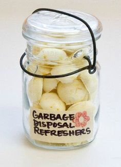 DIY Garbage Disposal Refreshers PLUS 16 other gifts in jars