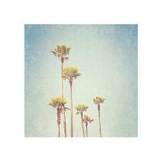 Minimalist California Beach Decor, Vintage Summer Palm Trees Print, Seaside Photography, Los Angeles - California Dreamin'