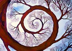 Spiral by Helen Klebesadel: Giclee Print available at www.artfulhome.com