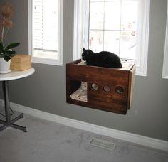cat climber perch | DIY Box Cat Perch | PetDIYs.com