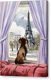 Dachshund In Paris Canvas Print by David Rogers