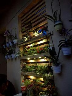 Használt tető léc és raklap felhasználásával készült virágtartó. Fa, Bookcase, Lounge, Shelves, Garden, Home Decor, Airport Lounge, Drawing Rooms, Shelving