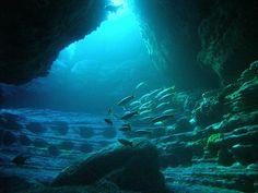 Dump A Day Underwater World (55 Pics)