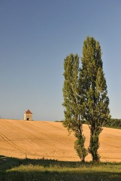 De streek wordt niet voor niets het Toscane van Frankrijk genoemd