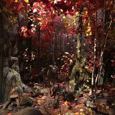 Royal Ontario Museum, Painting, Art, Art Background, Painting Art, Kunst, Paintings, Performing Arts, Painted Canvas