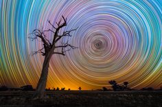 from Star Trails, Lincoln Harris. I love how all the colours of the stars actually come through:')<3