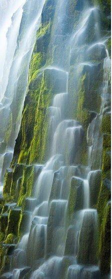 Proxy Falls - Oregon