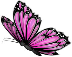 Pink Butterfly Transparent PNG Clip Art Image