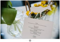 Lori & Greg – The Conservatory, Franschhoek – A Preview. | Frank Nash - Cape Town Wedding Photographer Conservatory, Ecommerce Hosting, Cape Town, Place Card Holders, Wedding, Valentines Day Weddings, Winter Garden, Greenhouses, Weddings