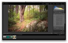 3 Uses for the Radial Filter Tool in Lightroom 5