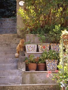 Pots and planters | Make Mine Mosaic | Page 2