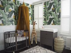 Wallpaper- Jungle palm by milton and King , Gold canopy from Molly meg