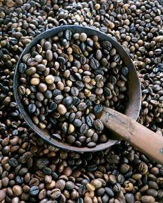 freshly roasted coffee beans in bali by 1CheekyChimp, via Flickr
